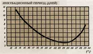 Кривая Мюллера